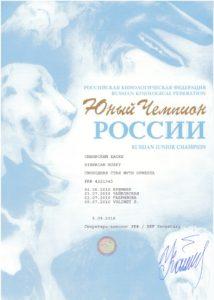 Диплом юного чемпиона России
