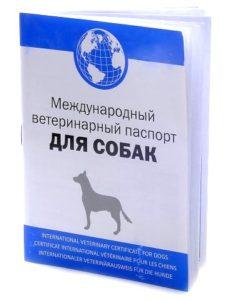 veterinarnyj-pasport