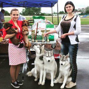 dog-show Belarus