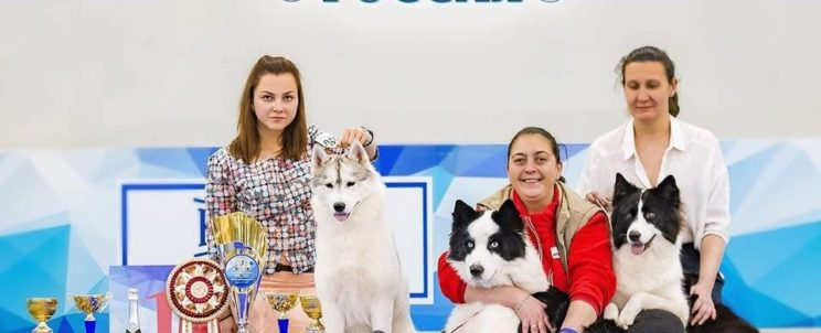 Россия-2017