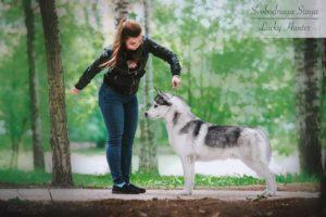 Svobodnaya Staya Laky Hunter
