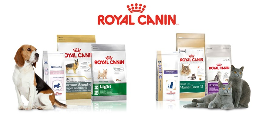 Выставка собак корм royal canin